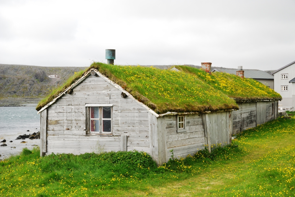 'Green' roofed building in Norway
