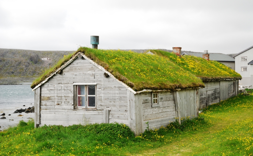 The environmentally-friendly roof (Day113)