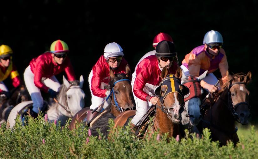 Just horsing around (Day120)