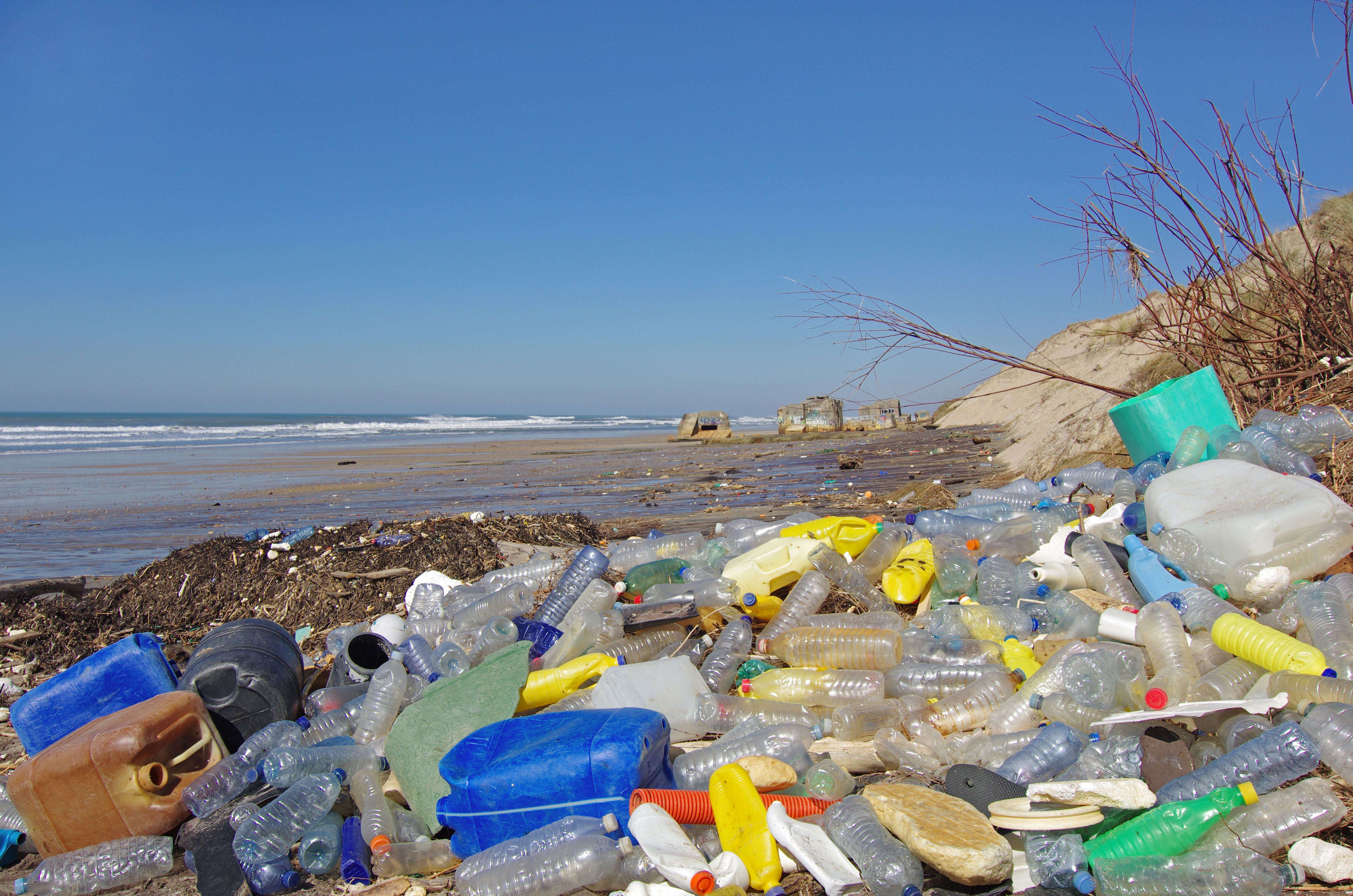 Plastic waste and oceans of opportunity (Day 151) | Institution of ...