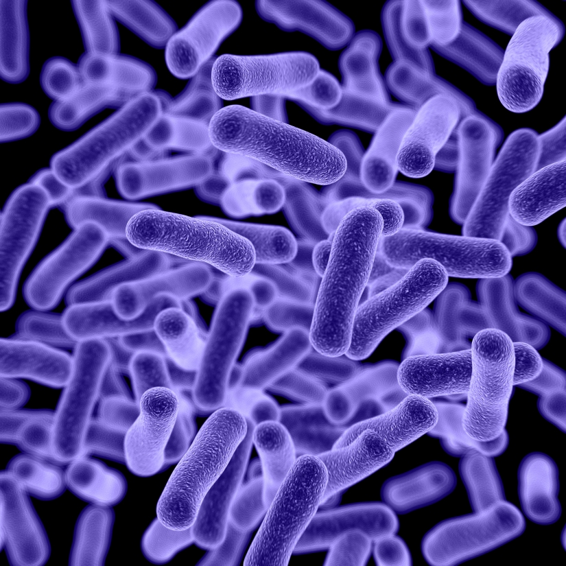 Blocking bacterial biofilms without antibiotics (Day157)