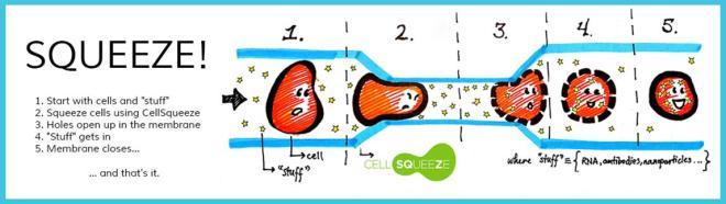 CellSqueeze