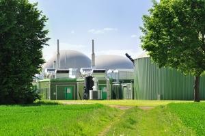 Biofuel plant