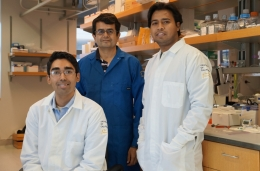 Photo Credit | Sonia Fernandez UCSB From left to right Aaron Anselmo, Samir Mitragotri and Sunny Kumar