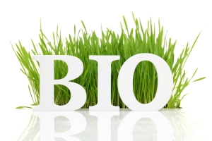 bio - word