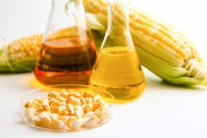 agricultural biofuels