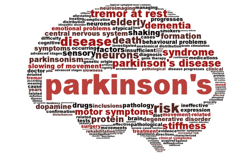 Nanofibres can ease the pain of Parkinson's disease (Day 331)