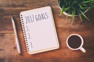 2017个目标