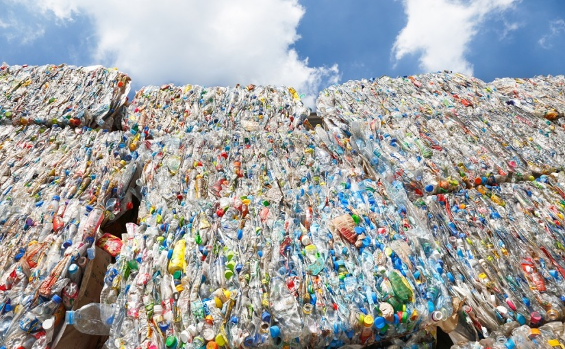 GUEST BLOG: The importance of solving plastics pollution – my experience pitching in Parliament